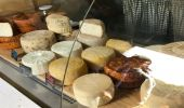 Tasty Cheese Tour: al via i sentieri dei formaggi in Cilento